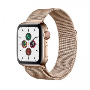 AppleWatch S5 Edelstahl 40mm Cellular Gold (Milanaise gold)