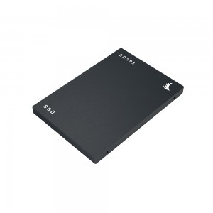 Angelbird SSD Enterprise ED381-510 480GB SATA 6Gb/s