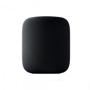 Apple HomePod (spacegrau)