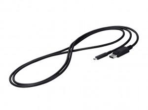 Eizo USB-C auf Displayport Kabel 2m
